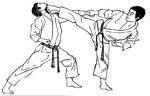 karate(1)